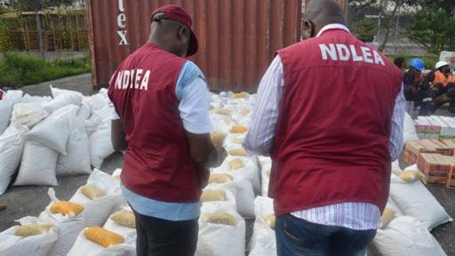 NDLEA Arrests 89 Drug Dealers With 2,800 Tonnes Of Illicit Drugs In Kebbi-Crystal News